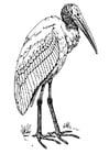 Kleurplaat ibis