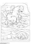 Kleurplaat ijsbeer