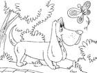 Kleurplaat jachthond