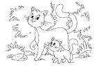 Kleurplaat kat en kitten