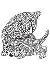 Kleurplaat kat met kitten
