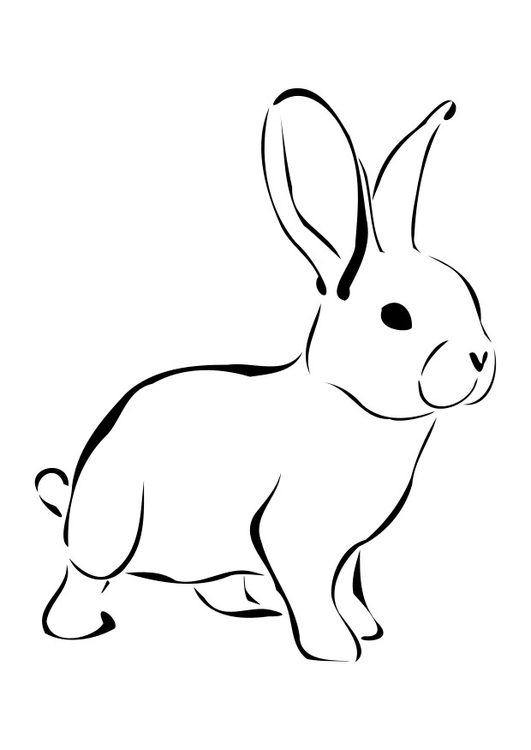 kleurplaat konijn afb 27276