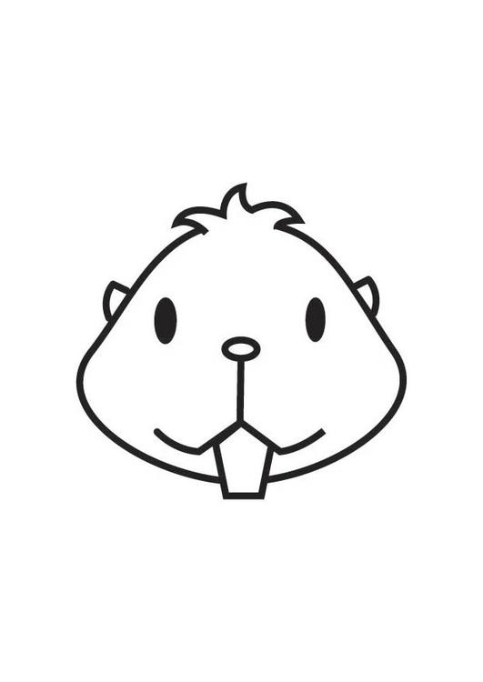 Kleurplaat Kop Hamster Afb 17547