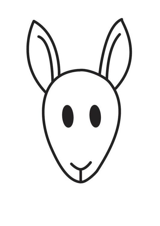 kleurplaat kop kangoeroe afb 17853