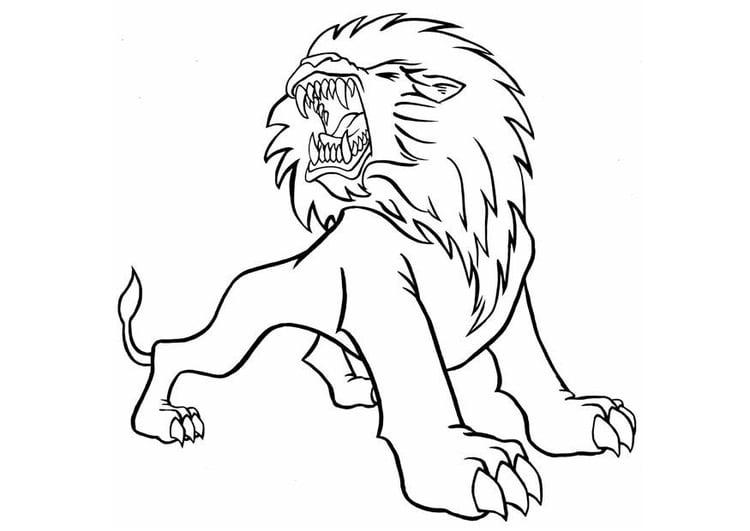 Kleurplaten Leeuw.Kleurplaat Leeuw Afb 8823