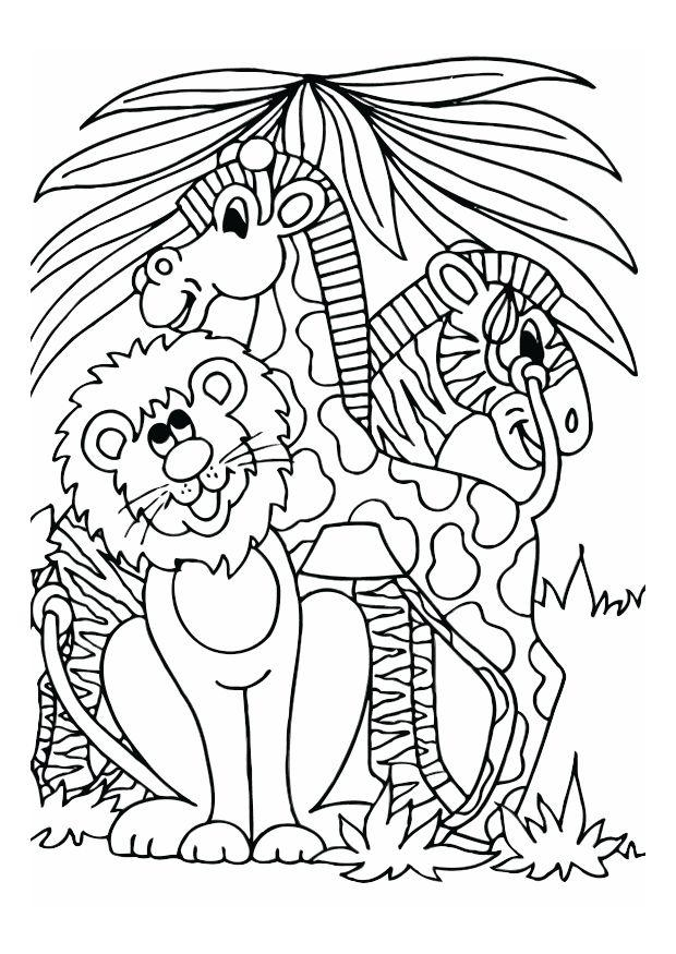 Kleurplaat Leeuw Giraf En Zebra Afb 12528 Images