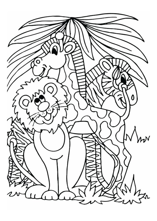 Kleurplaat Leeuw Giraf En Zebra Afb 12528