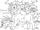Kleurplaat leeuw
