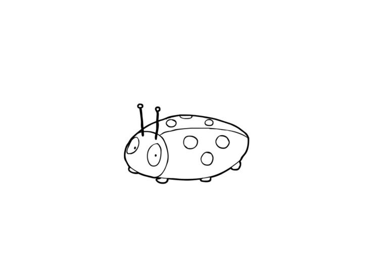 Kleurplaat Lieveheersbeestje Afb 13849