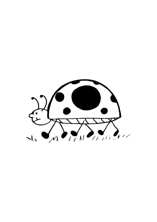 Kleurplaat Lieveheersbeestje Afb 10718