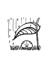 Kleurplaat lieveheersbeestje shuilt voor de regen
