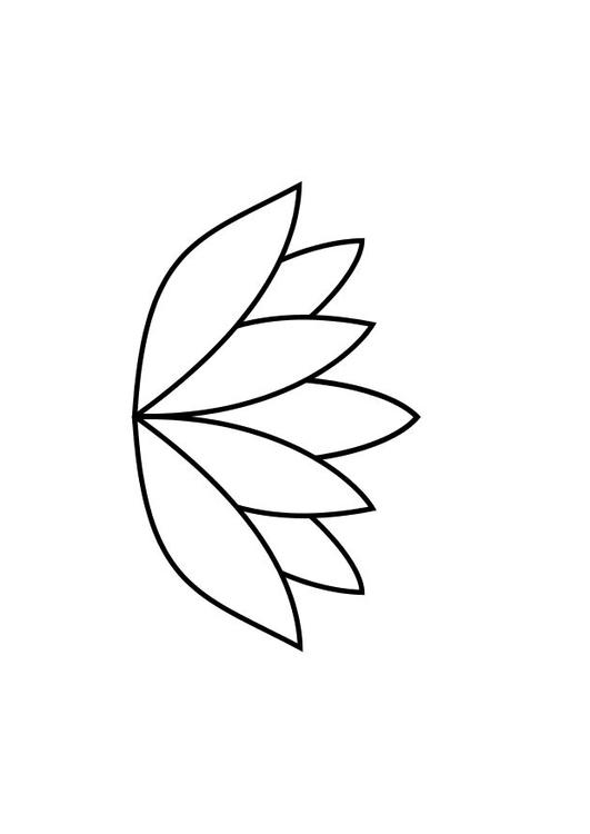 Kleurplaat Lotus Afb 10467
