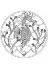 Kleurplaat mandala-1802b