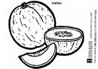 Kleurplaat meloen