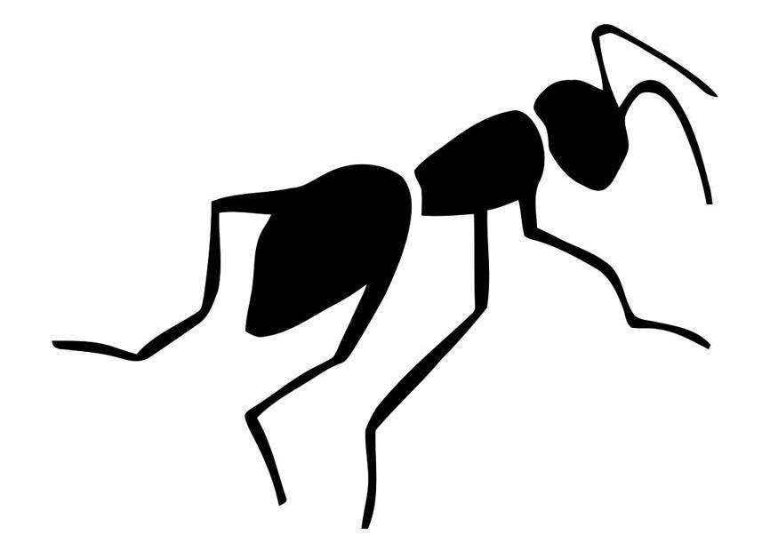 free ant clipart black and white - photo #49
