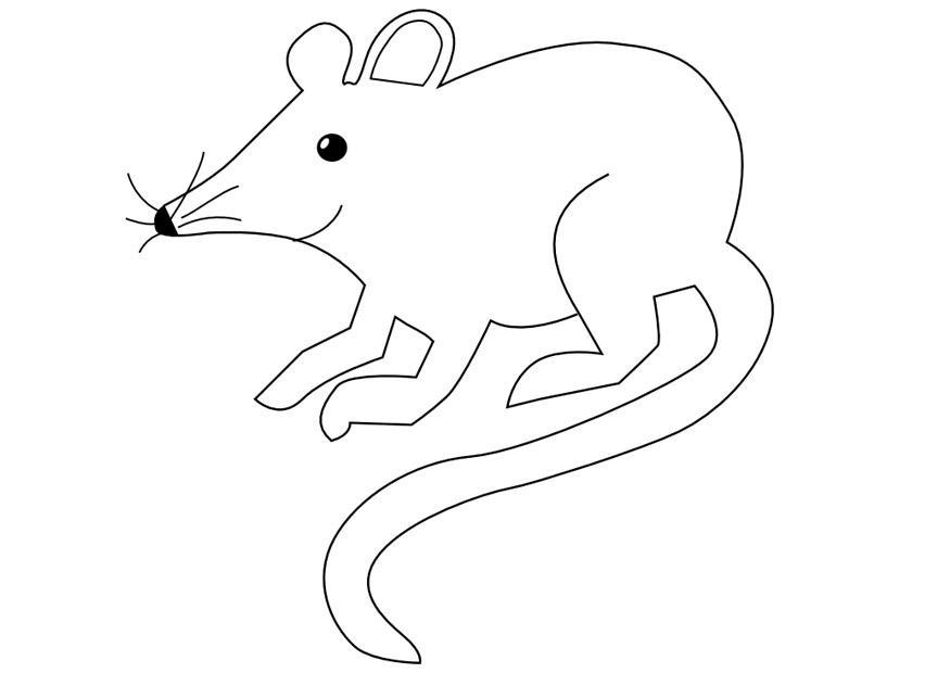 kleurplaat muis afb 9971