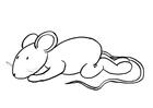 Kleurplaat Transi, de muis