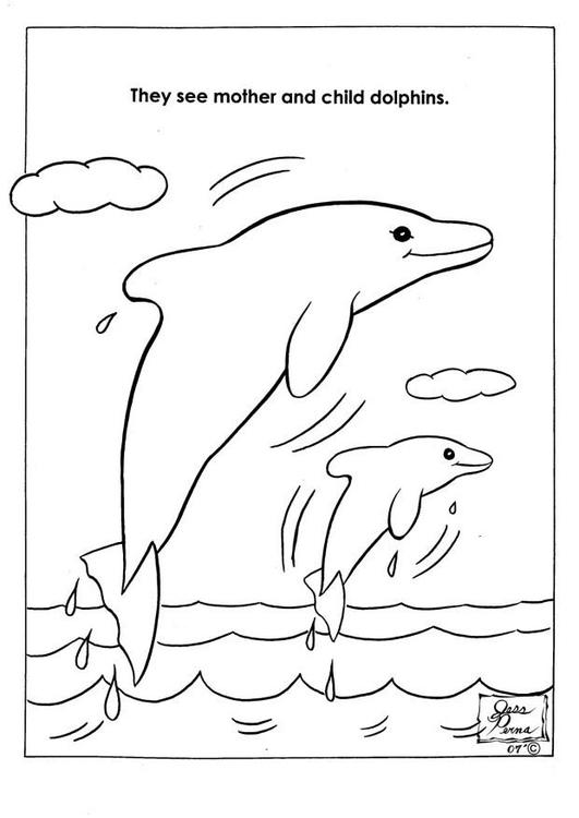Kleurplaat natuurpark dolfijnen - Afb 7944.