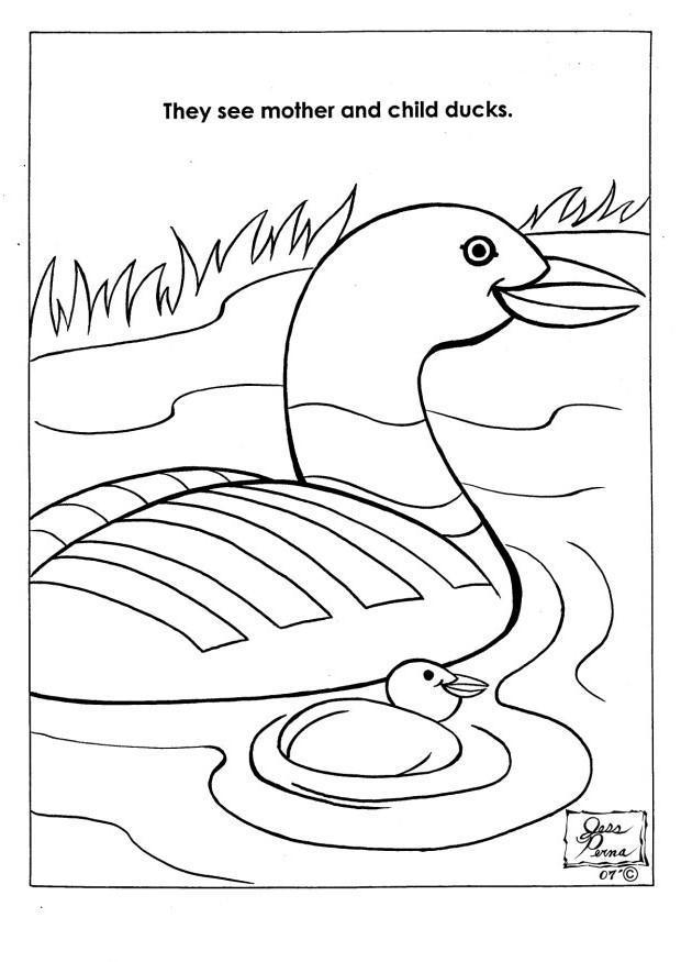 Kleurplaat Natuurpark Eenden Afb 7945