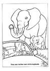 Kleurplaat natuurpark olifanten