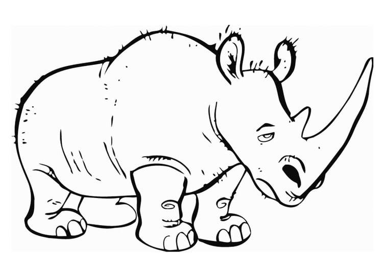 kleurplaat neushoorn gratis kleurplaten om te printen