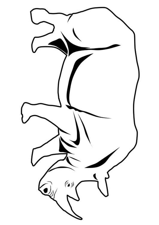 kleurplaat neushoorn afb 27337