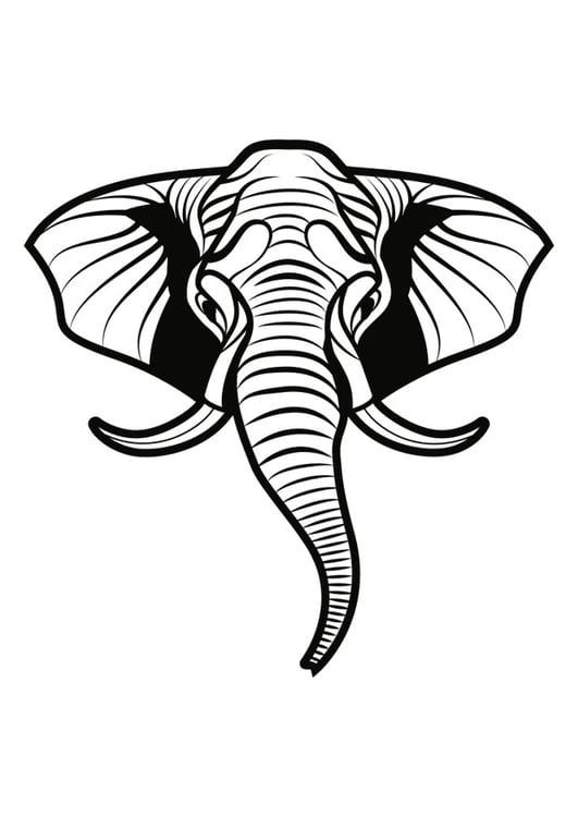 kleurplaat olifant gratis kleurplaten om te printen