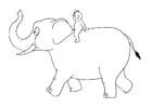 Kleurplaat 07b. olifant met persoon