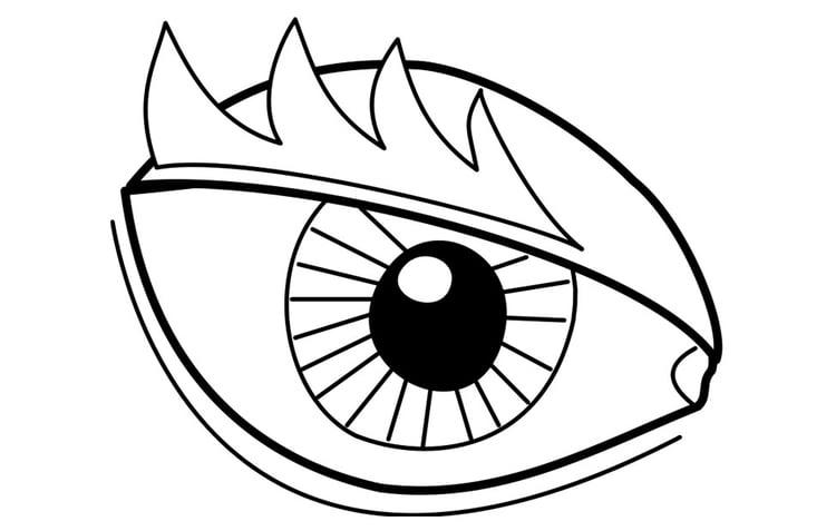 kleurplaat oog afb 22719