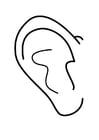 Kleurplaat oor