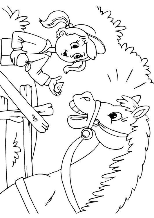 Kleurplaat Paard En Meisje Afb 25971