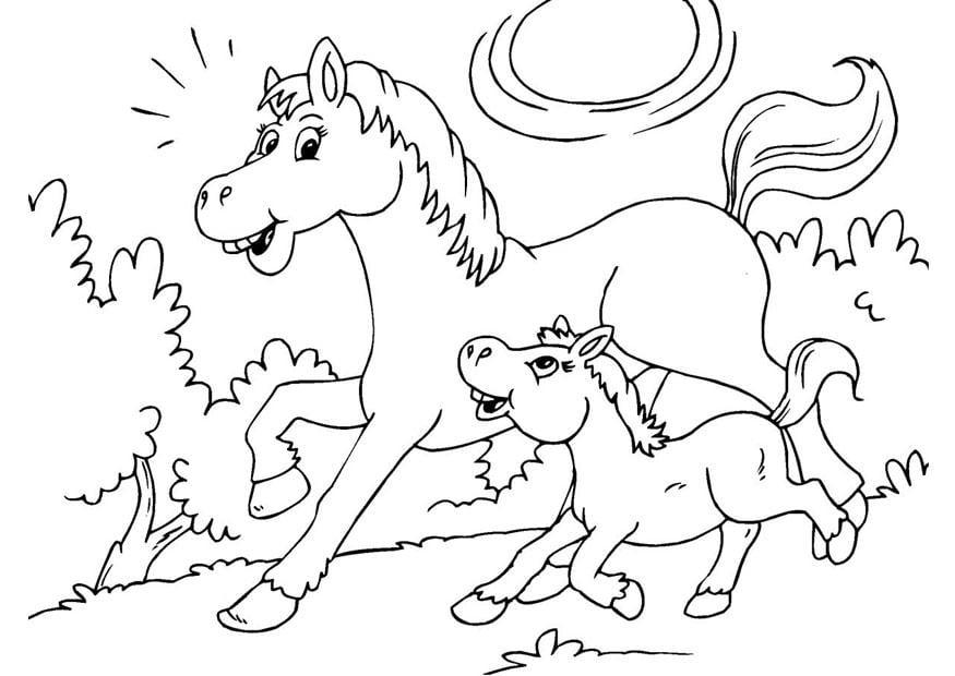 kleurplaten paard met veulen