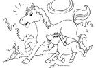 Kleurplaat paard en veulen
