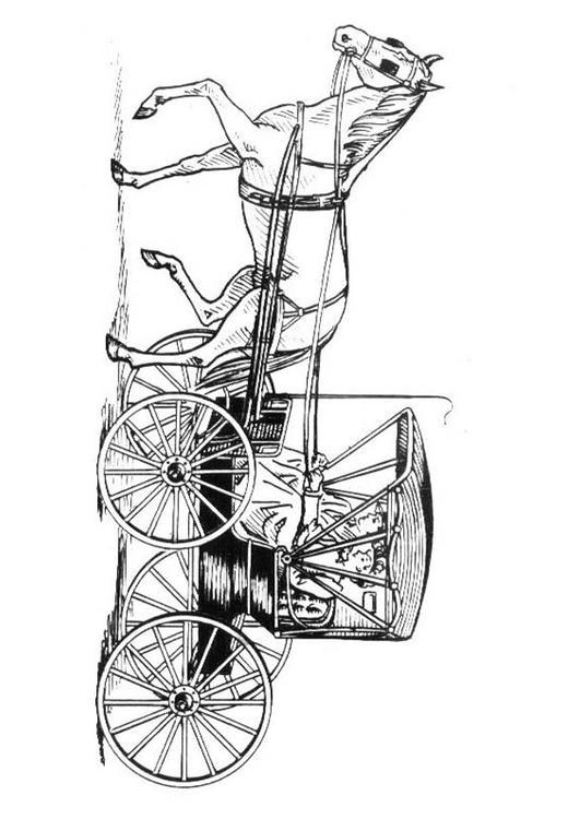 Kleurplaat Paard En Koets Kleurplaat Paard Met Koets Afb 18997