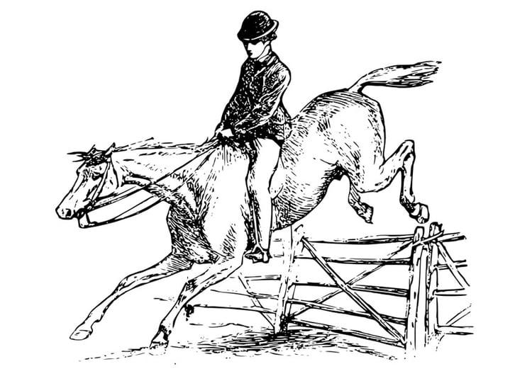 Kleurplaten Paard En Ruiter.Kleurplaat Paard Met Ruiter Afb 27894 Images