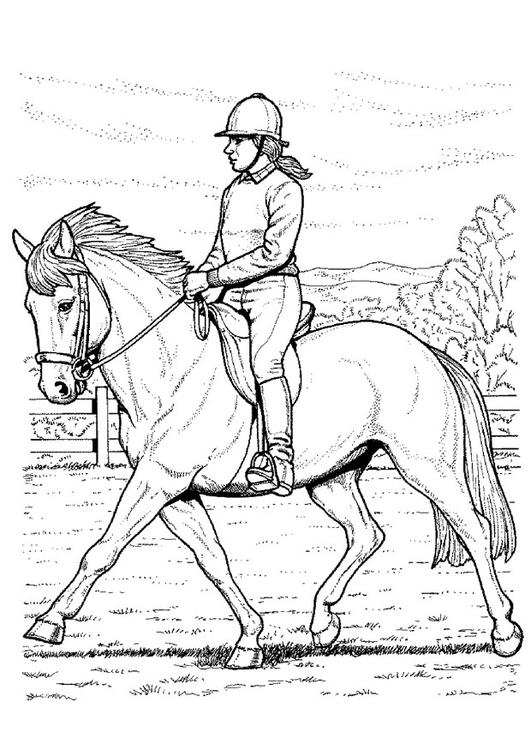 Kleurplaten Paard En Ruiter.Kleurplaat Paard Rijden Afb 9118