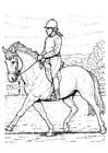 Kleurplaat paard rijden