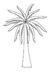 kleurplaat palmboom gratis kleurplaten om te printen