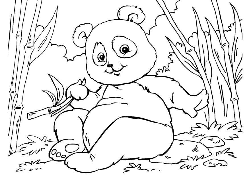 kleurplaat panda afb 27859