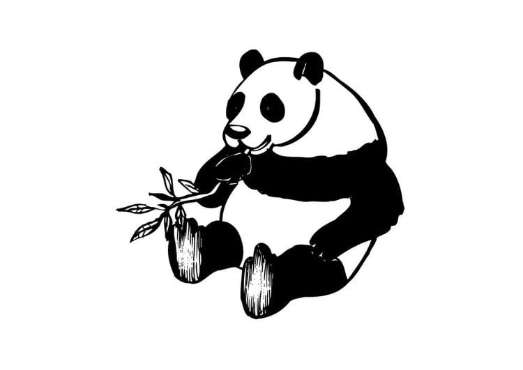 Pandabeer Kleurplaat Printen Kleurplaat Panda Gratis Kleurplaten Om Te Printen