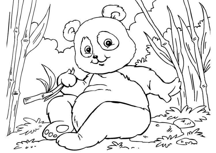 kleurplaat panda