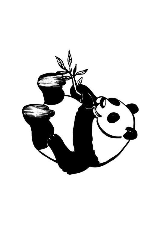 Kleurplaat Panda Afb 10434