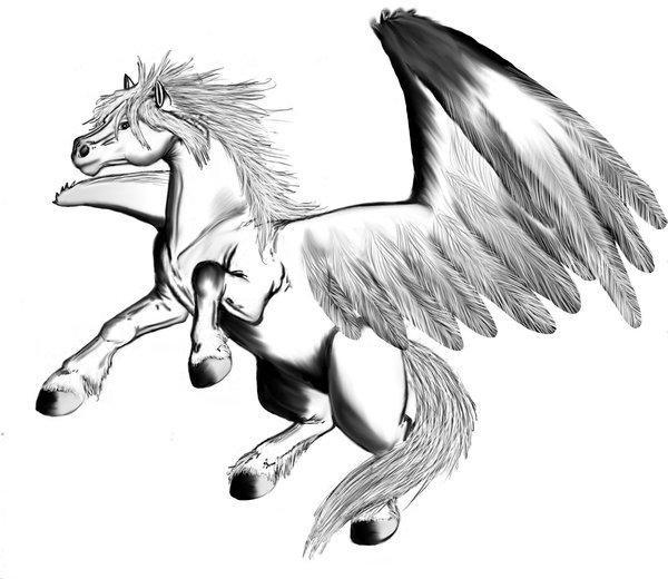 Volwassenen Y Kleurplaten Kleurplaat Pegasus Afb 16039