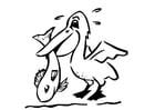 Kleurplaat pelikaan met vis