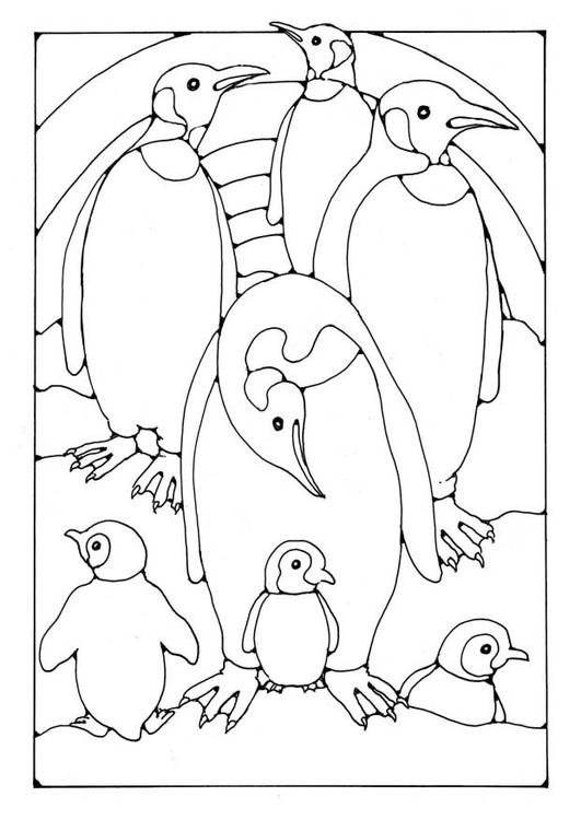 Kleurplaat Pinguins Afb 19580
