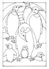 Kleurplaat pinguins