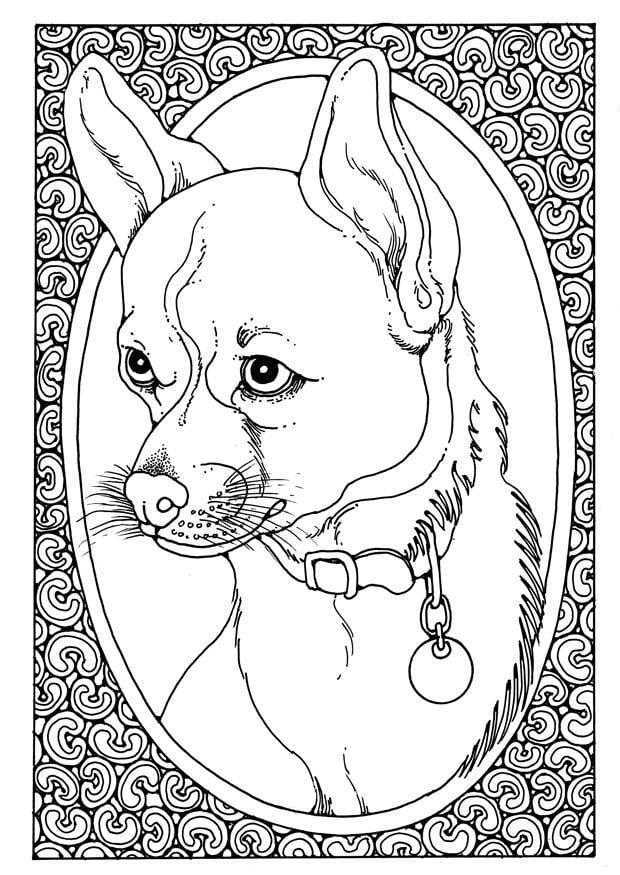 Afbeeldingen Honden Kleurplaat Kleurplaat Portret Van Hond Afb 28205