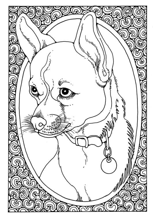 Mandala Kleurplaten Met Dieren Kleurplaat Portret Van Hond Afb 28205