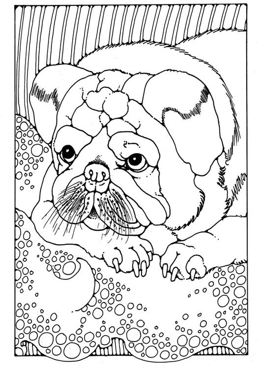 Kleurplaat Puppy Afb 28203