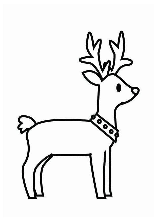 Kleurplaat rendier Kerst - Afb 26704.
